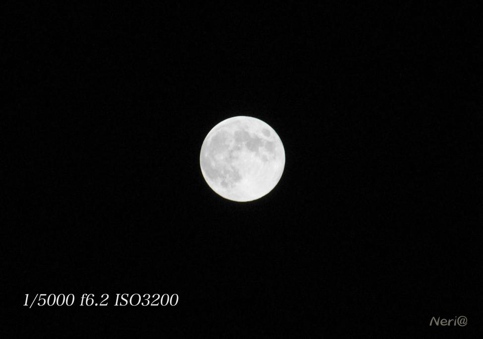 満月 MR.MOONLIGHT_f0141609_20485313.jpg