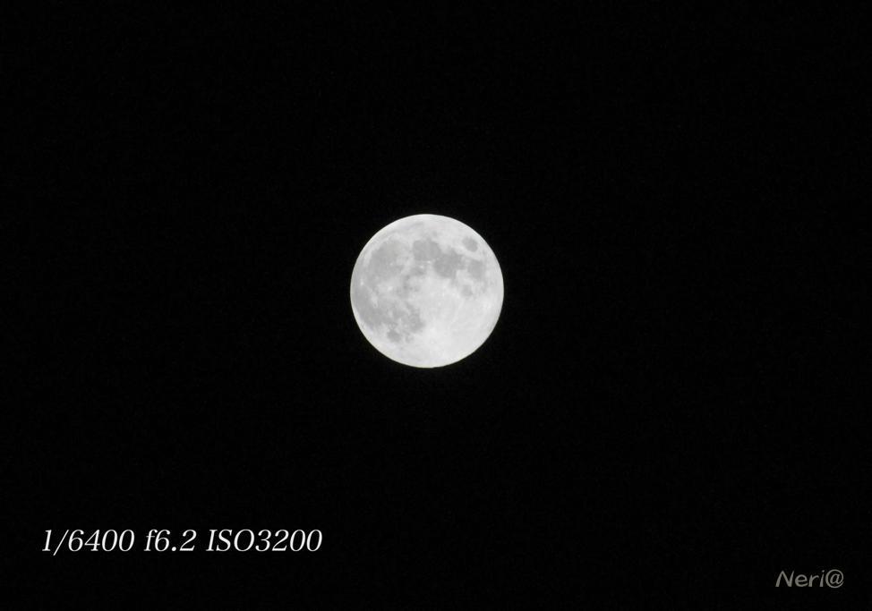 満月 MR.MOONLIGHT_f0141609_20485488.jpg