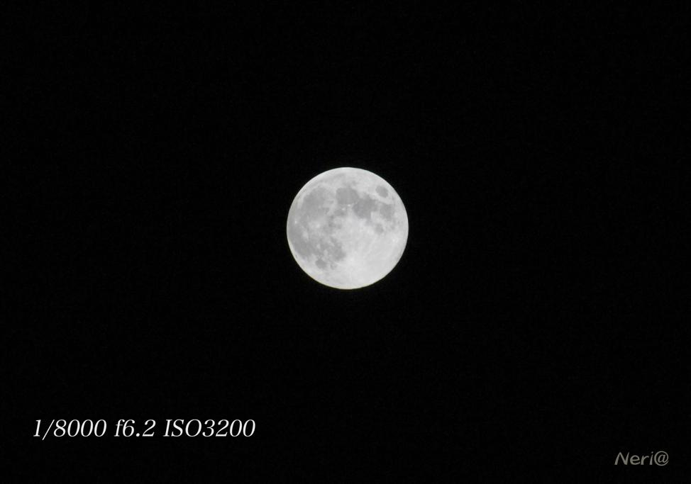 満月 MR.MOONLIGHT_f0141609_20485687.jpg