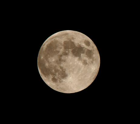 満月_a0000912_22411681.jpg