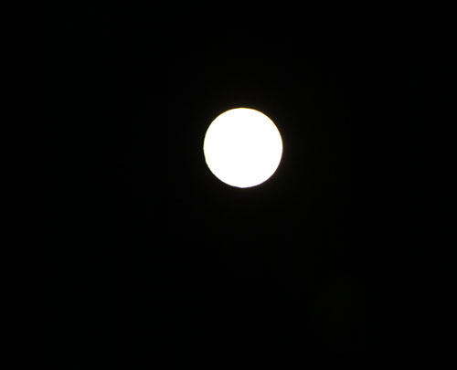 中秋の名月_e0048413_20221822.jpg