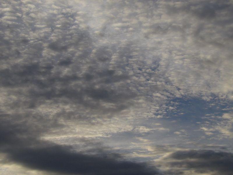 今日も夕日は見えず_c0025115_18563254.jpg