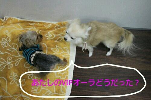 お散歩_b0130018_17214373.jpg