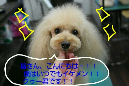 お散歩_b0130018_17232392.jpg