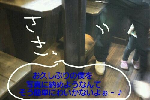 お散歩_b0130018_1921111.jpg