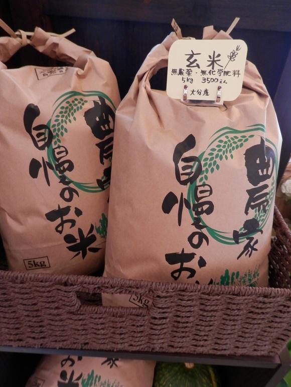 「自然農の玄米」販売いたします。_a0125419_20254231.jpg