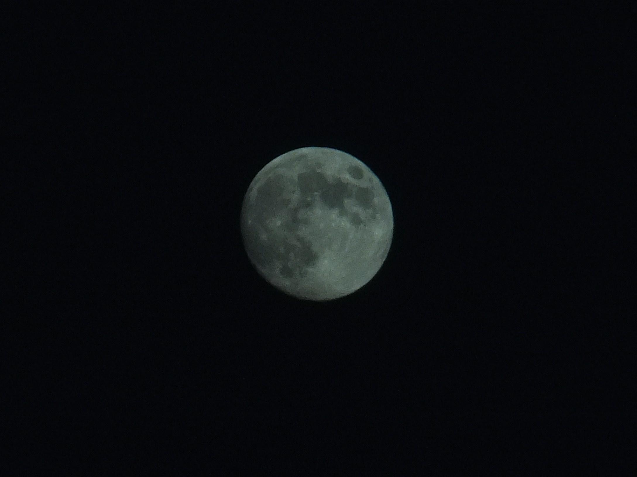 中秋の名月_b0137932_14204853.jpg