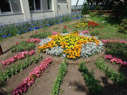 第21回学校花壇コンクール受賞校写真展のご案内_e0145841_18144546.jpg