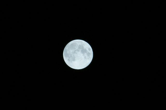 中秋の名月_a0257652_2311296.jpg