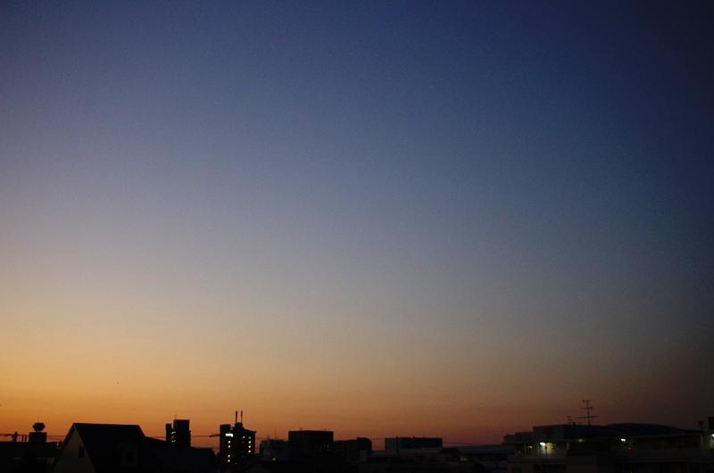 ブドウ+桃+メープル=昭和!?_e0167593_22224118.jpg