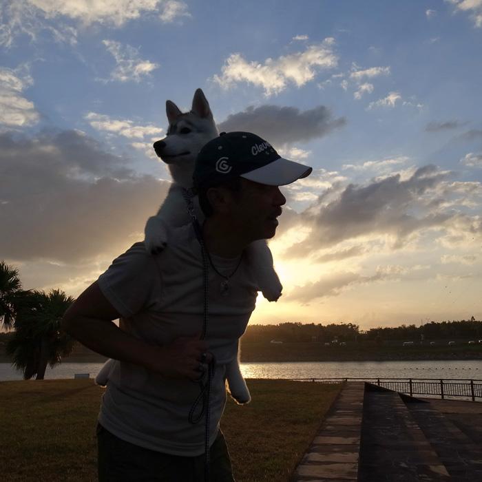 子犬 充実のラインナップ_c0049299_2074424.jpg