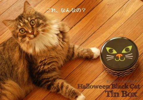 ハロウィーンのクロネコ缶_b0253205_265118.jpg