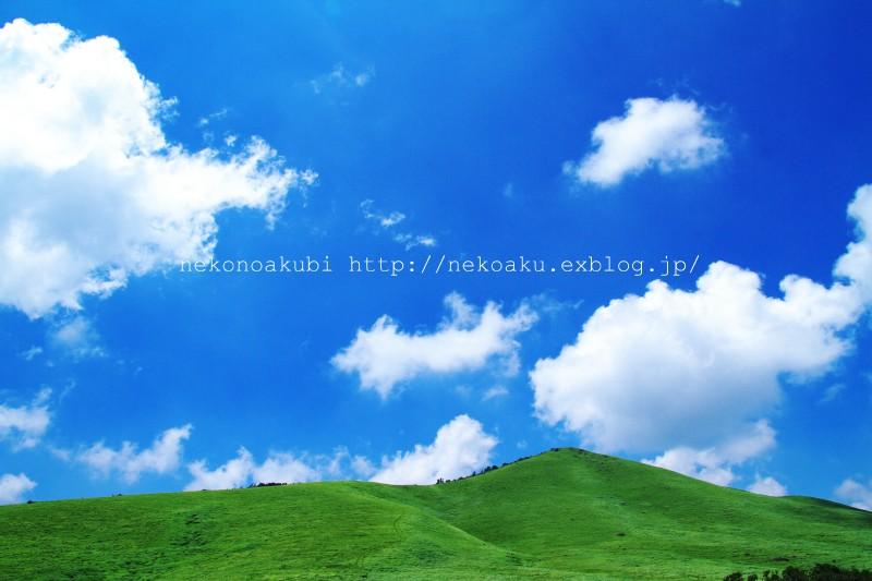 b0003512_10503646.jpg