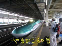 e0069615_20532661.jpg