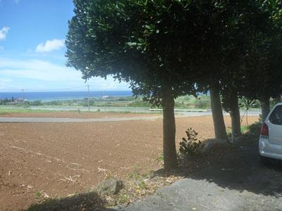 沖縄~久米島 Part 1_f0208315_22334012.jpg