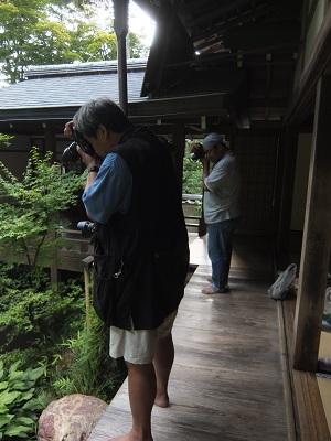 京都に現れた、くまさん兄弟_f0050534_0113055.jpg