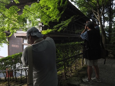 京都に現れた、くまさん兄弟_f0050534_0114996.jpg