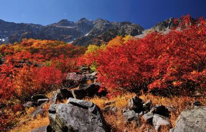 遠く北海道大雪山では初雪が降ったそうな....紅葉は標高の...._b0194185_22223153.jpg