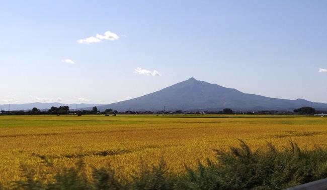 台風の後の  田んぼと岩木山_a0136293_15152654.jpg