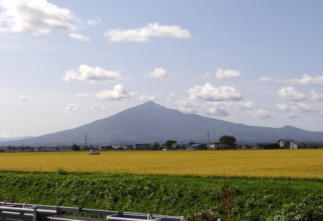 台風の後の  田んぼと岩木山_a0136293_15343514.jpg