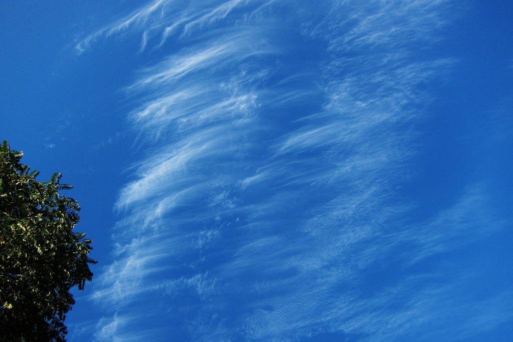 今朝も寒かった/カワセミ/金星と土星が接近/秋の空_b0024798_15103342.jpg
