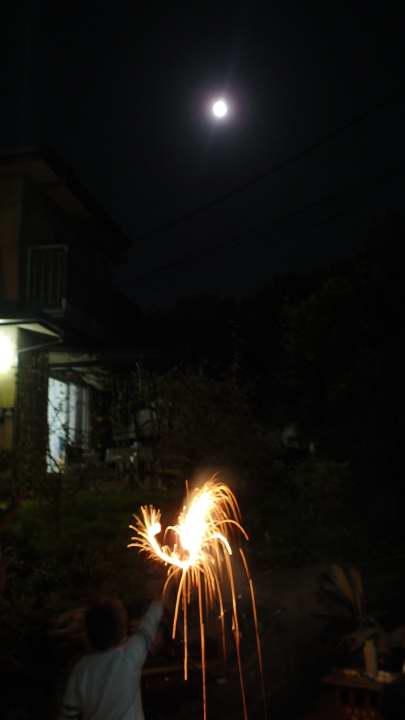 中秋の名月と鶏こうじ弁当_b0171098_7304360.jpg