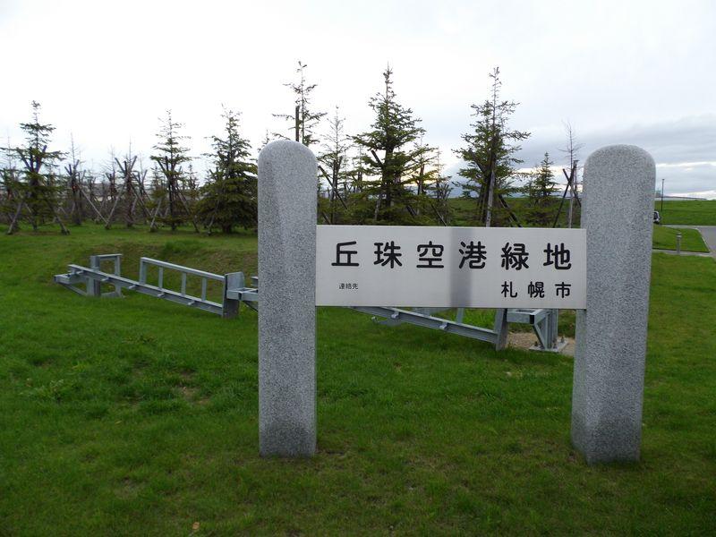灯台下暗し:丘珠空港緑地発見_c0025115_22455787.jpg