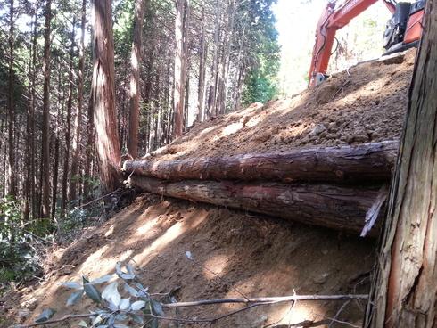 林業時々農業_d0190318_194432100.jpg