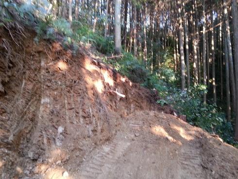 林業時々農業_d0190318_19452031.jpg