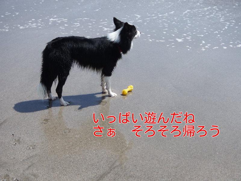 a0232619_20112643.jpg