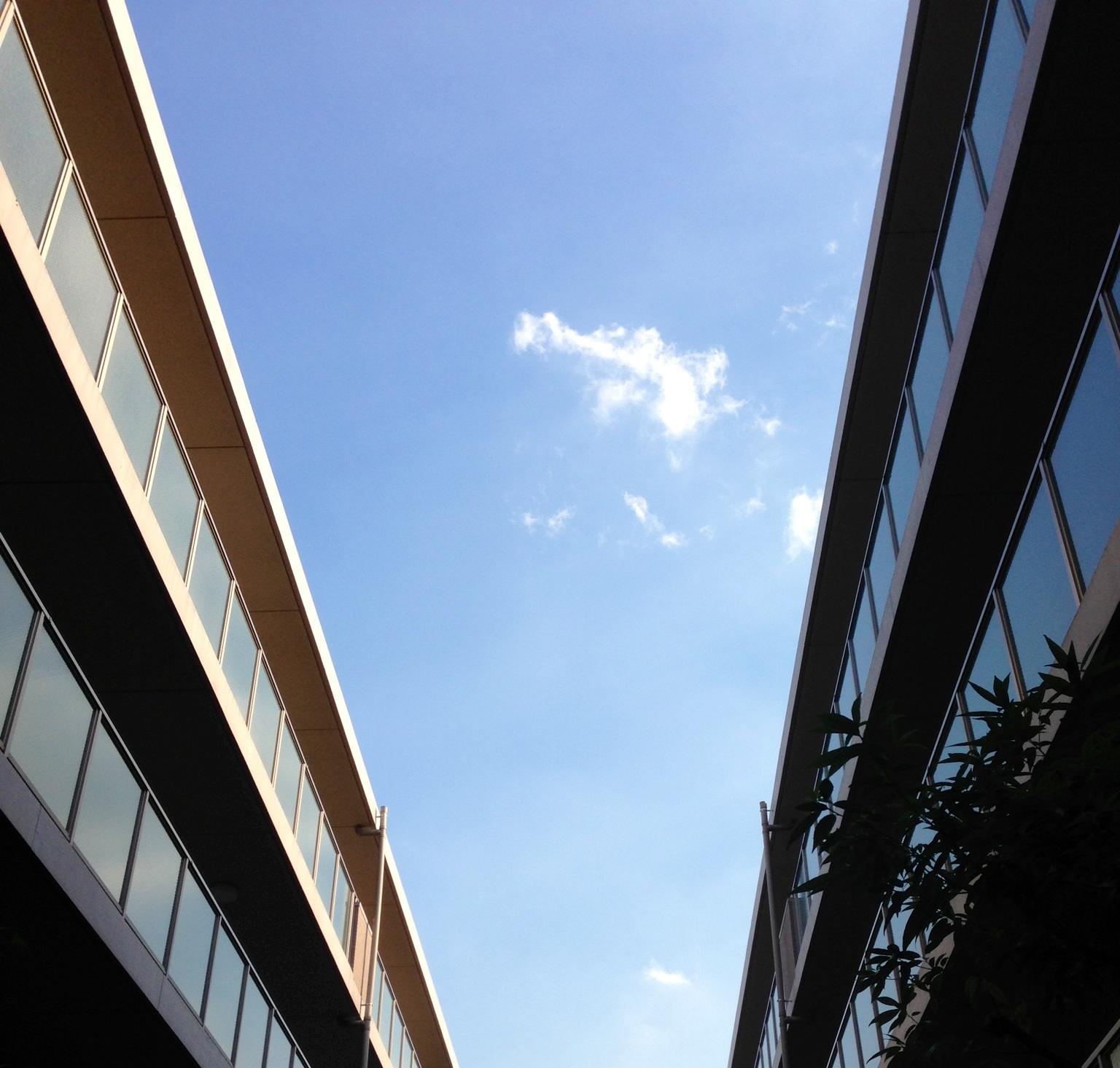 空に。_b0298740_003790.jpg