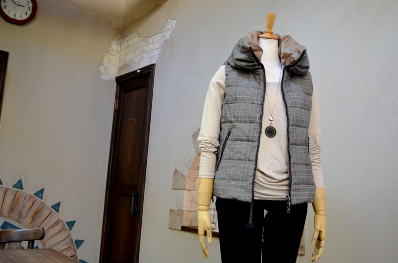 """The vest is the best.\""_d0153941_10481217.jpg"