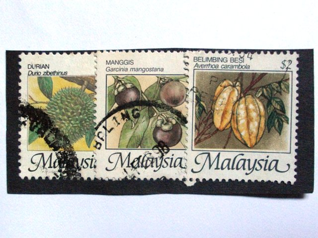 post card from Malaysia_e0230141_10324784.jpg