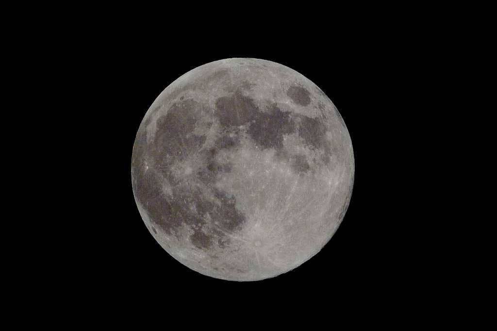 中秋の名月/カワセミ/山の秋_b0024798_18173792.jpg