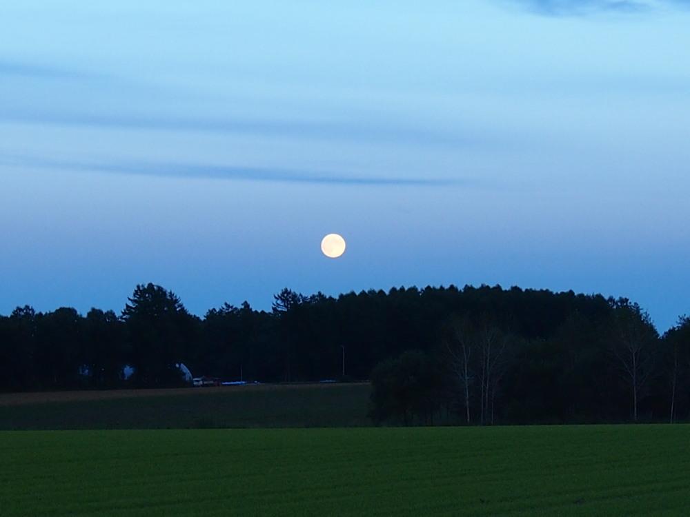 秋の夕暮れ時・・東の空には「月」西の空は「夕焼け」_f0276498_17162413.jpg