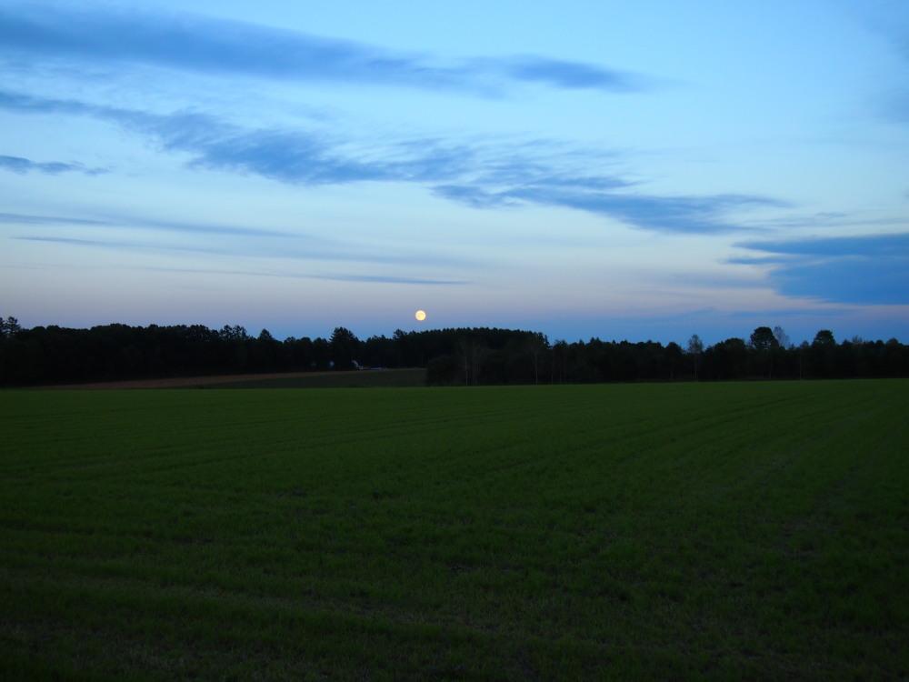 秋の夕暮れ時・・東の空には「月」西の空は「夕焼け」_f0276498_1718338.jpg