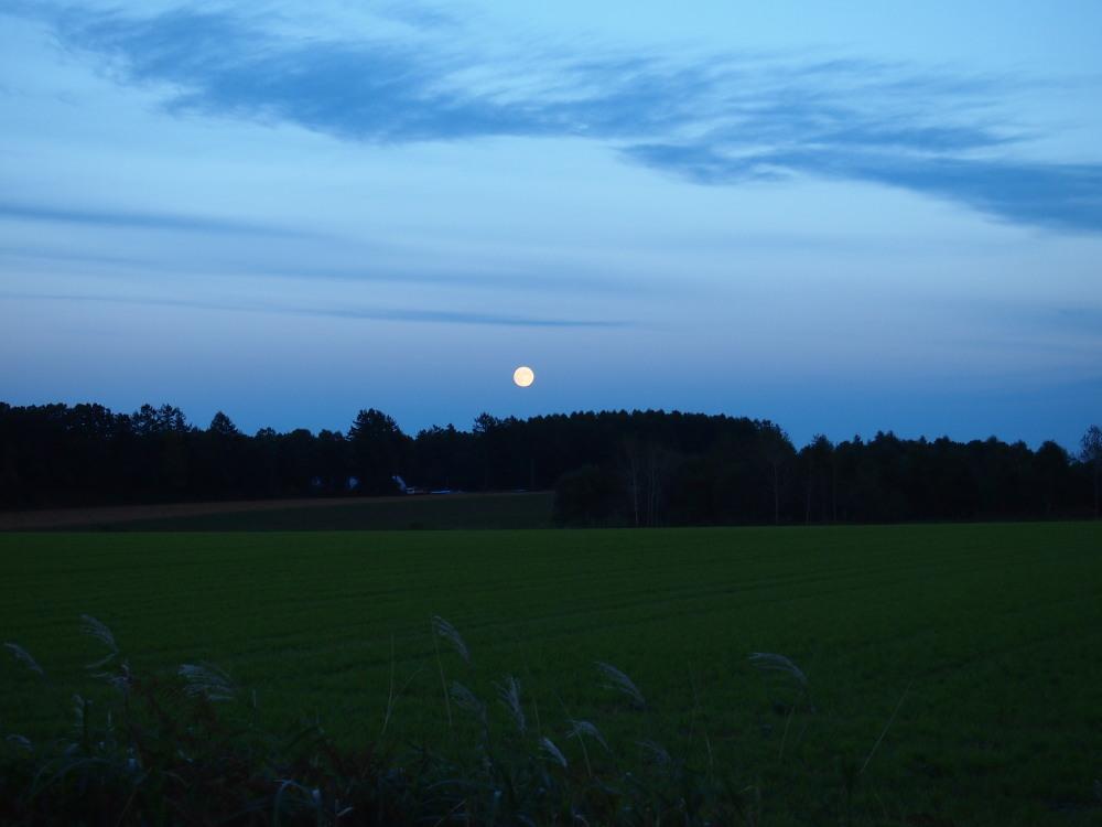 秋の夕暮れ時・・東の空には「月」西の空は「夕焼け」_f0276498_17184540.jpg