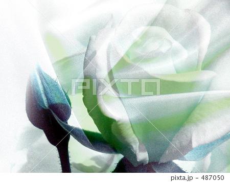 b0161652_11561240.jpg