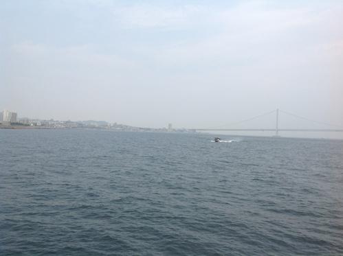 夏休み自由研究報告会  明石・淡路島の巻_b0153663_0214430.jpg