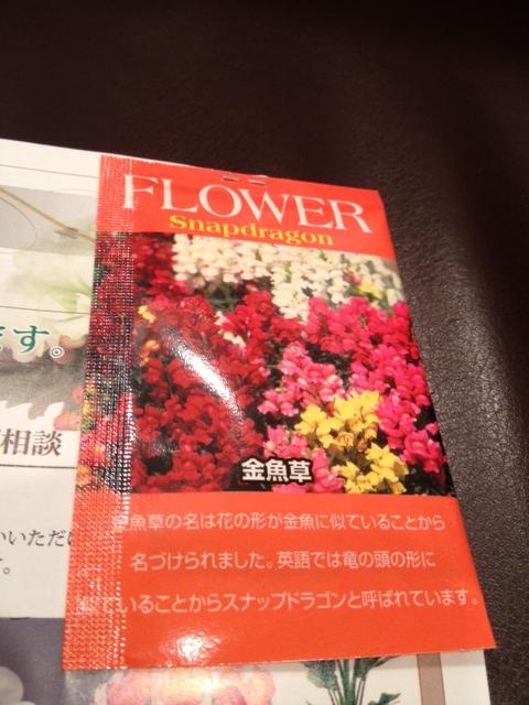 綺麗な花を…_d0062076_18475375.jpg