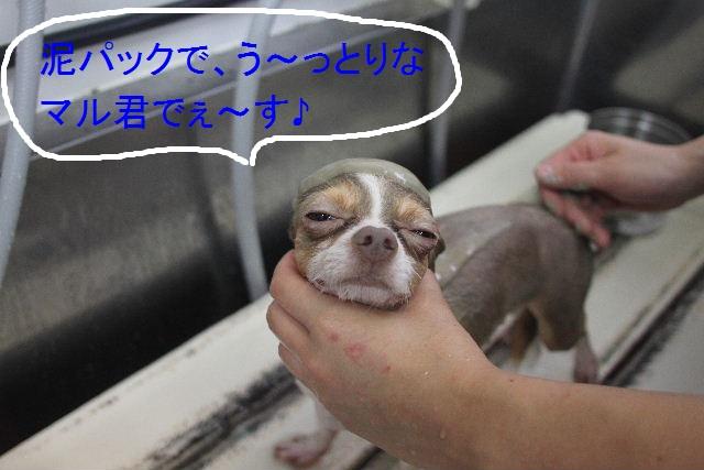 こんばんわ!!_b0130018_23231039.jpg