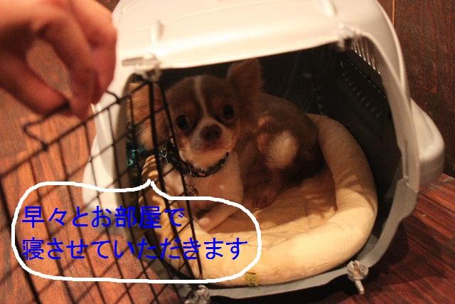 こんばんわ!!_b0130018_23234748.jpg