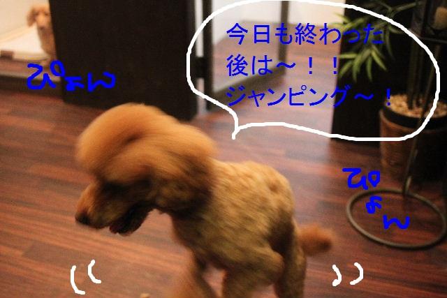 こんばんわ!!_b0130018_23251820.jpg