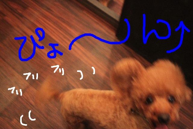 こんばんわ!!_b0130018_23252377.jpg