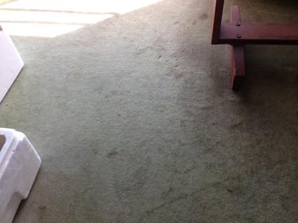 地元に帰ろう 〜俺の部屋パトロール:千葉さんち 前編〜_f0203027_1295688.jpg