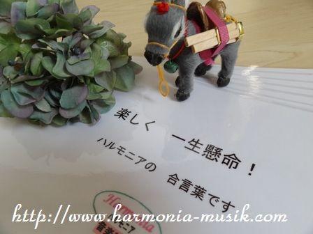 ピアノお稽古☆家で練習する楽器は・・_d0165645_12101053.jpg