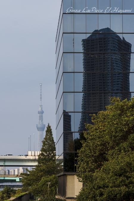 東京の風景 ビルに映るビルとスカイツリー_b0133053_0104100.jpg