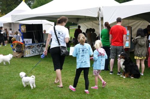 愛犬と参加するイベント2013 Paws for a Cause_d0129786_8235275.jpg