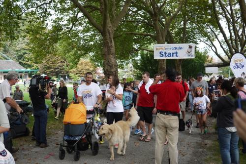 愛犬と参加するイベント2013 Paws for a Cause_d0129786_8292224.jpg