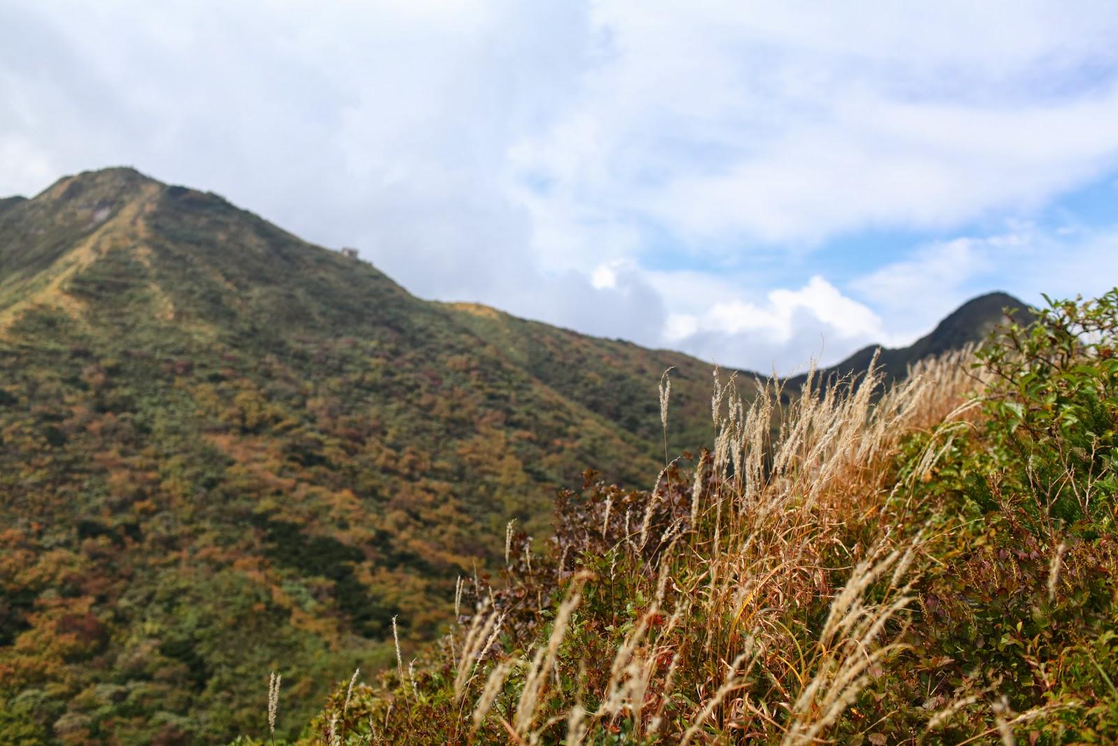 『山行』_e0124490_1640575.jpg